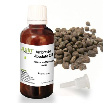 Ambrette Absolute Oil