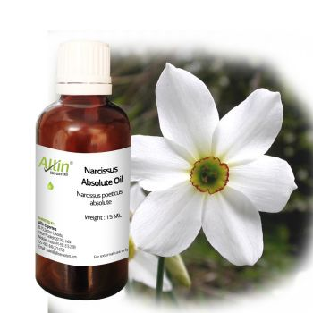 Narcissus Absolute Oil