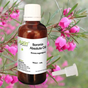 Boronia Absolute Oil