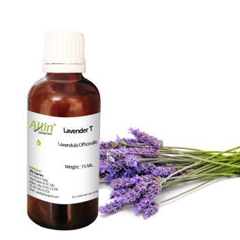 Lavender T