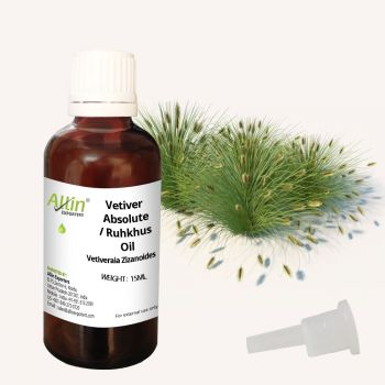 Vetiver Absolute/ Ruhkhus (Green) Oil