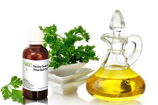 herbal-oil-parsley-oil-fb