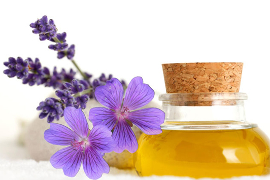 geranium-essential-oil-uses-and-benefits