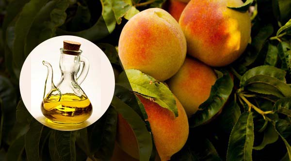 peach oil uses