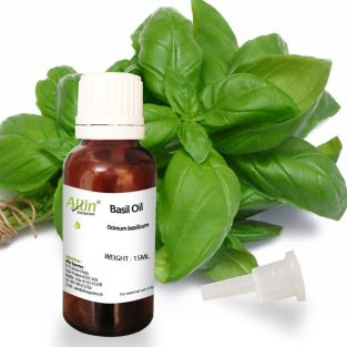 Explore Miraculous Benefits of Basil Oil to Retain Good Health